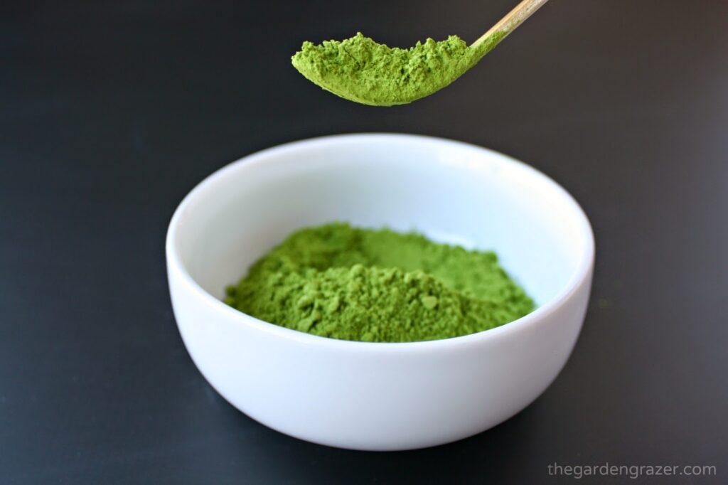 A scoop of organic matcha powder